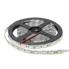 LED Strip 5050 24V Non-Waterproof Proffesional Edition